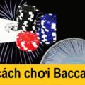 cược Baccarat